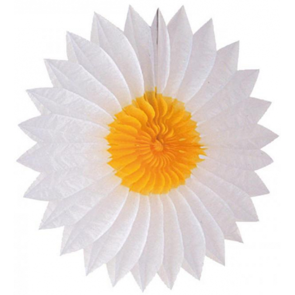 Eventail papier 50 cm Daisy blanc jaune