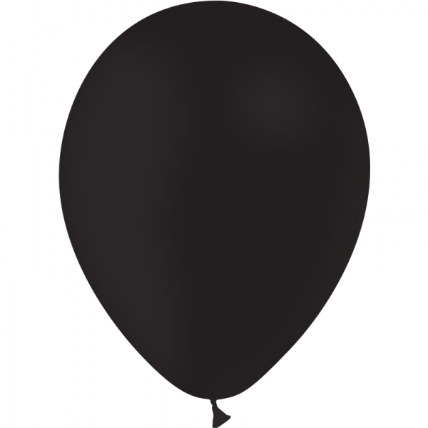 100 ballons Noir opaque 30 cm