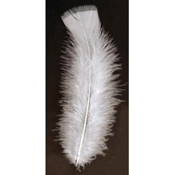 poche de 50 plumes blanche pieds plat 10 cm haut
