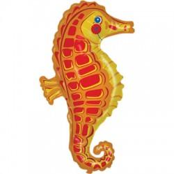 hippocampe 91.5 cm
