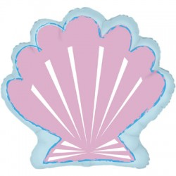 Coquille saint jacques 76 cm à plat