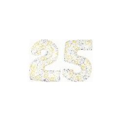 25 2 CHIFFRES BALLONS BLANC ET COEURS
