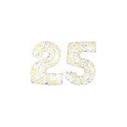 25 2 CHIFFRES BALLONS BLANC ET COEURS 25