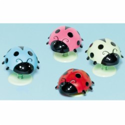 COCCINELLES SAUTEUSES *12 Birthday Girl