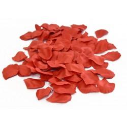 sachet de 144 petales ROUGEMR1000ROUGE AEC Plumes Et Petales