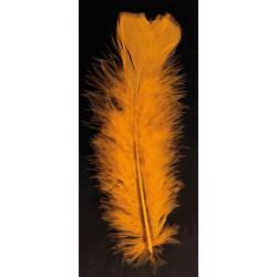 poche de 50 plumes orange pieds plat 10 cm