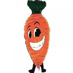 carrote 99cm cm à plat