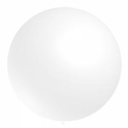 1 ballon 60cm blanc ballonBNIA60BLCP1 BALOONIA 55 cm/60 cm Ø Ballons Ronds