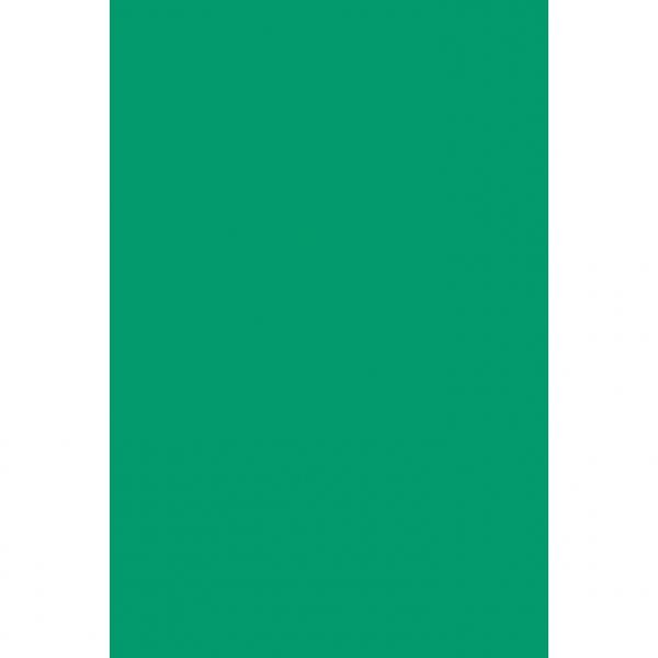 Nappe plastique 137*274 vert VERT
