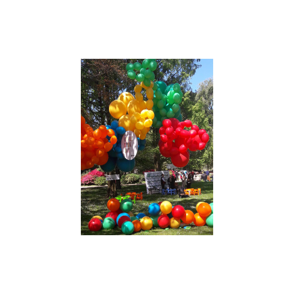4102018 DEVIS 100 ROBINS EGG BLEU4 10 2018 LBH Les Ballons Gonfles